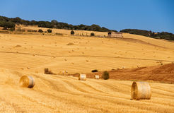 Tuscan hay landscape Stock Photo