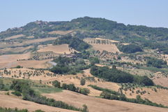 Tuscan hill landscape of fields Royalty Free Stock Images