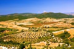 Tuscan hills Royalty Free Stock Image