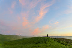 Tuscan hills Stock Photography
