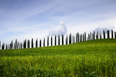 Tuscan hills and countryside Stock Images