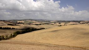 Tuscan hills. Landscape, tuscan hills panorama of the Sienese hills stock video footage