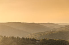 Tuscan hills at sunset. Sunset over a road lined with cypress trees Royalty Free Stock Images