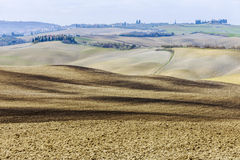 The Tuscan hills Royalty Free Stock Photos
