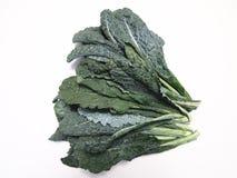 Tuscan Kale. Organic locally grown farm fresh gourmet Tuscan Kale also called lacinato kale, dinosaur kale, or black kale stock photos
