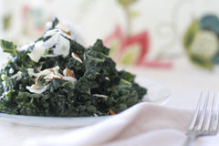 Tuscan Kale Salad Royalty Free Stock Images