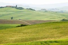 tuscan krajobraz w wiosna czasie Obrazy Royalty Free