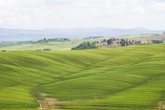tuscan krajobraz w wiosna czasie Zdjęcie Royalty Free