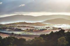 Tuscan kullar i dimman royaltyfria foton