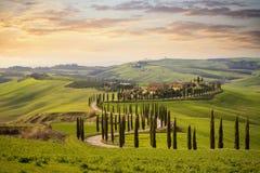 Tuscan kulle med rad av cypresstr?d och lantbrukarhem p? solnedg?ngen liggande tuscan italy arkivfoton