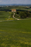 Tuscan landscape Stock Images