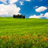 Tuscan Landscape Royalty Free Stock Photography