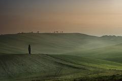 Tuscan Landscape Stock Photos