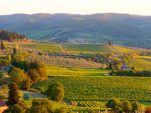 Tuscan landscape. Beautiful tuscan landscape during sunset stock photos