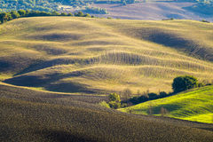 Tuscan landscape.Beautiful Tuscan morning. Italy stock photography