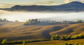 Tuscan landscape.Beautiful Tuscan  morning Stock Images
