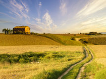 Tuscan landscape.Beautiful Tuscan  morning Royalty Free Stock Images