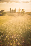 Tuscan landscape with a chapel at sunset Stock Photo