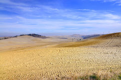 Tuscan landscape in the crete of siena Royalty Free Stock Photos