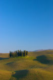 Tuscan landscape cypress. Hills of Siena San Quirico d'Orcia Val d'Orcia Siena Tuscany Stock Image