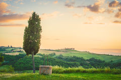 Tuscan landscape of cypress and a well. Tuscan landscape with cypress and a well on sunset background Stock Photography