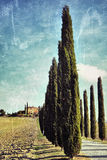 Tuscan landscape. Filtered Royalty Free Stock Photography