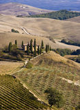 Tuscan Landscape, isolated farm with cypress Royalty Free Stock Photo