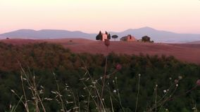 Tuscan landscape. Italy, tuscany, typical landscape at sunset stock video