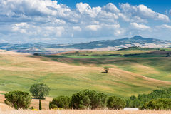 Tuscan landscape, Italy Royalty Free Stock Image