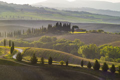 Tuscan landscape in the morning Royalty Free Stock Photography