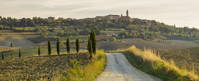 Tuscan landscape in the morning Royalty Free Stock Photo