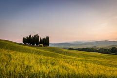 The Tuscan Landscape Royalty Free Stock Photo