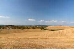 Tuscan landscape near Siena. Tuscan landscape in summer near Siena, Tuscany, Italy royalty free stock photo