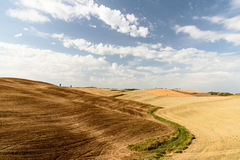 Tuscan landscape during summer with hills and trees at the horiz Stock Photo