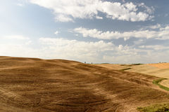 Tuscan landscape during summer near Pienza Stock Image