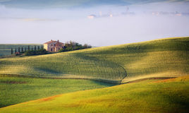 Tuscan Landscape in Sunrise Light. Tuscan fields in yellow sunrise light with old farm, Val d'Orcia royalty free stock images