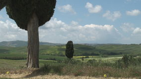 Tuscan landscape. Typical landscape near Terrapille in Val d'Orcia in Tuscany, Italy stock footage