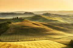 Tuscan landscape. Typical Tuscan landscape with rolling hills in the morning royalty free stock photo