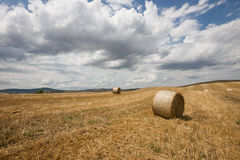 Tuscan landscape in Val d'Orcia (Siena, Italy) Royalty Free Stock Photos