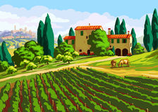 Tuscan landscape with Villa. Vineyard and cows Royalty Free Stock Image