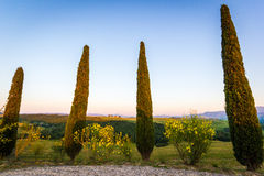The Tuscan Landscape, Vitaleta chapel Church, cypress trees Stock Photos