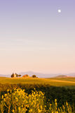 The Tuscan Landscape, Vitaleta chapel Church Royalty Free Stock Photography