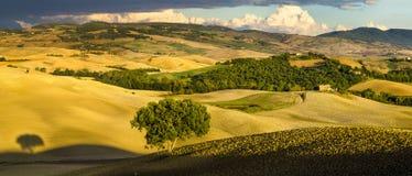 Tuscan landskap i morgonen Arkivbild