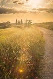 Tuscan landskap med ett kapell på solnedgången Royaltyfri Foto