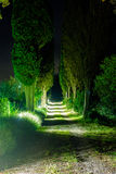 Tuscan Lane night. Lane approach to a Villa in Tuscany at night Royalty Free Stock Photography