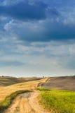 Tuscan lugn som går på vägen mellan fält Fotografering för Bildbyråer