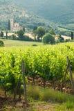 Tuscan lugn som går på vägen mellan fie Royaltyfri Fotografi