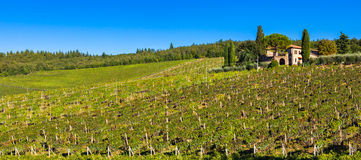 Tuscan Panorama Royalty Free Stock Photo