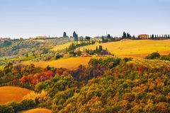 Tuscan pastoral rolling hills landscape in the fall. Colorful Tuscan pastoral rolling hills landscape in the fall. Tuscany, Italy Stock Photos
