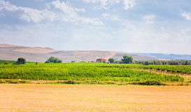 Tuscan peacefull landscape Stock Images